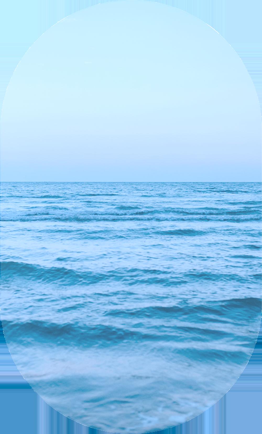 rc sea